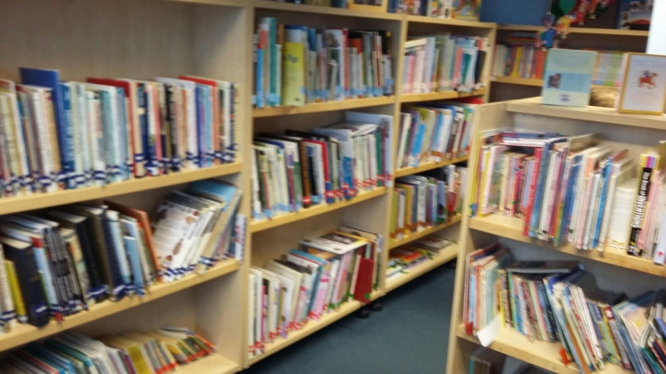 Erasmus England Nov 16 (4) Library