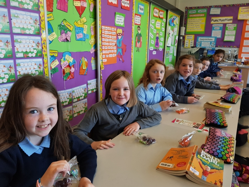 Food Dudes May 2017 St Johns National School