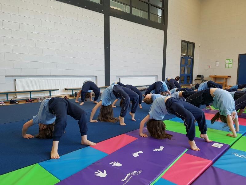 Gymnastics Jan 2017 (10)-min