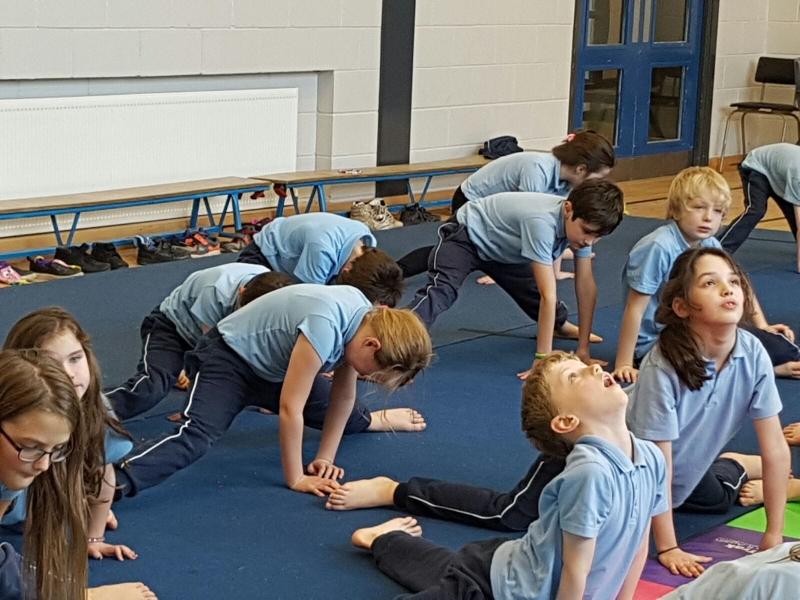 Gymnastics Jan 2017 (12)-min