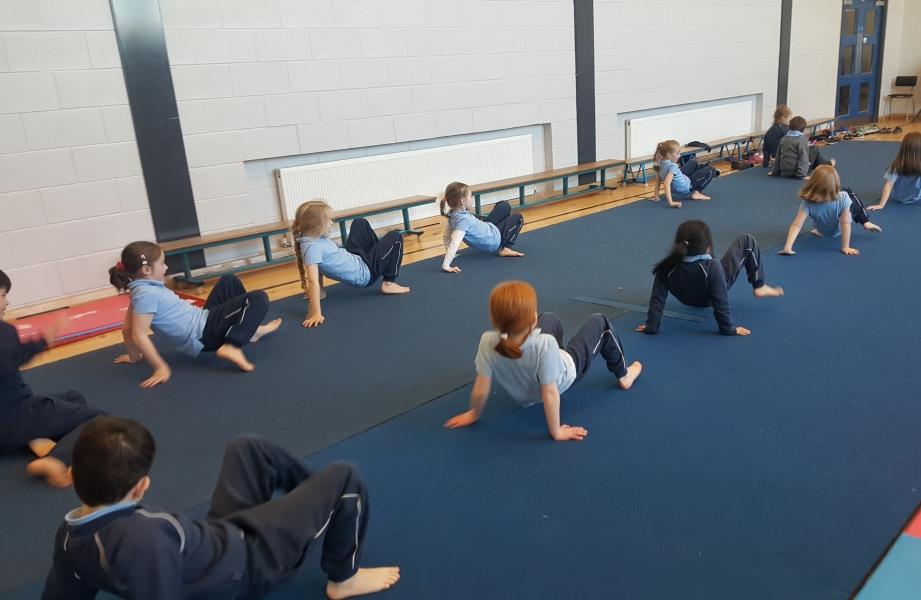 Gymnastics Jan 2017 (17)-min