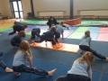 Gymnastics Jan 2017 (15)-min