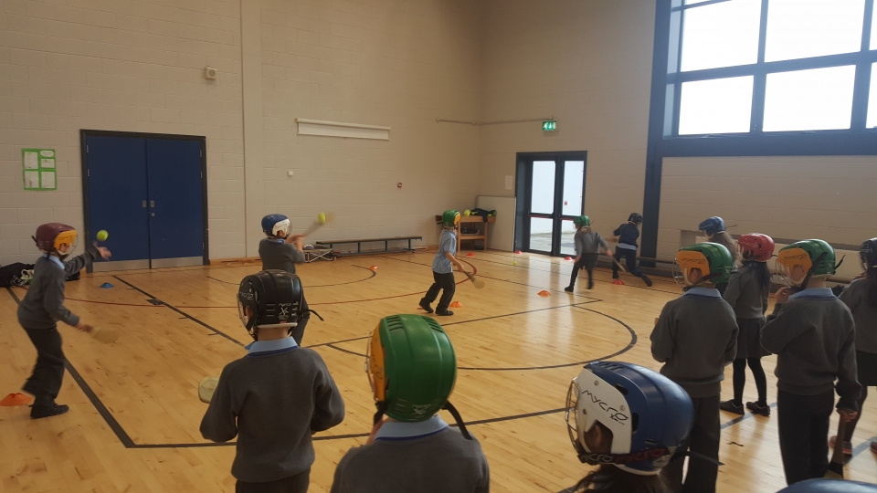 Hurling David O Dea 2nd Class 2016 (10)-min