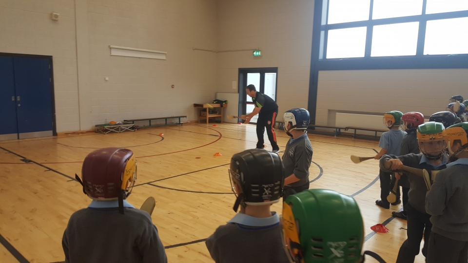Hurling David O Dea 2nd Class 2016 (9)-min