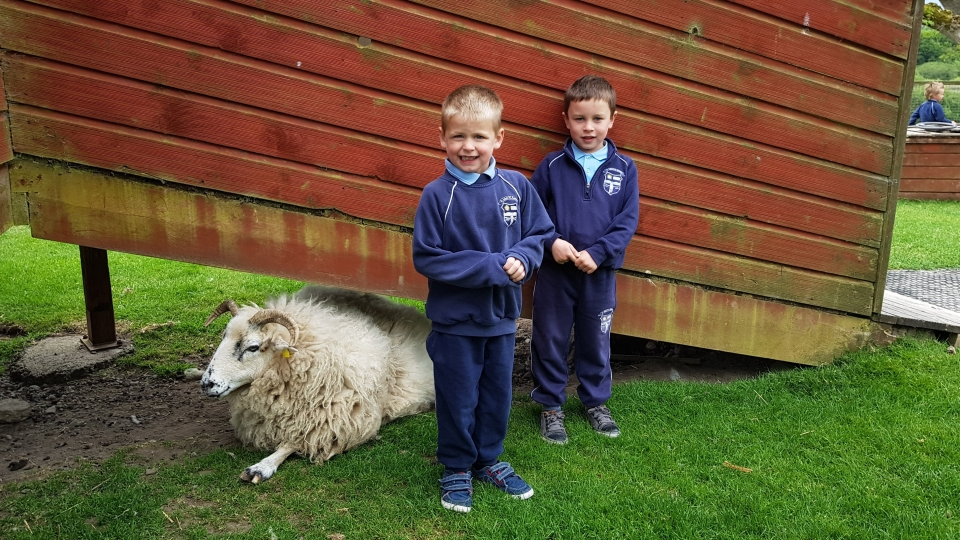 Junior Infants School Tour May 2017 Kennedys (37)-min