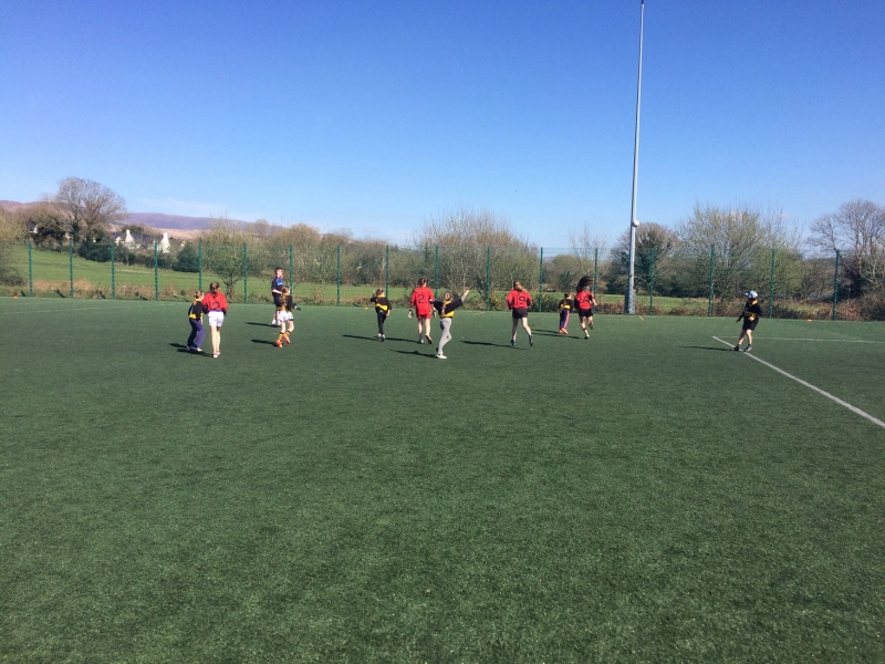 GAA Blitz March 2017 (4)