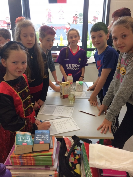 6th Class Mrs Lucey Science (2)-min