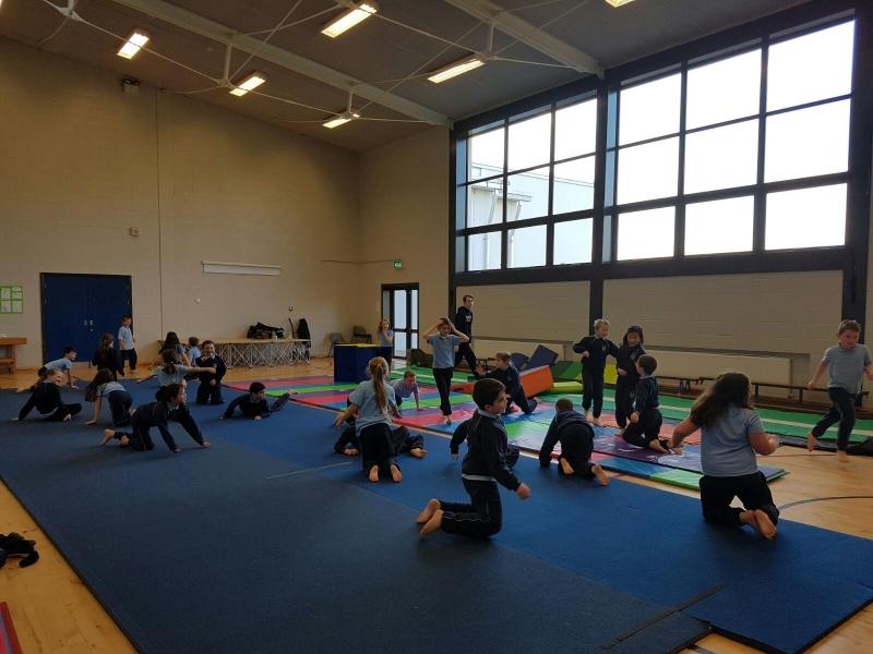 Gymnastics Jan 2017 (2)-min