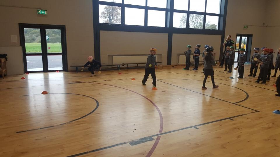Hurling David O Dea 2nd Class 2016 (17)-min