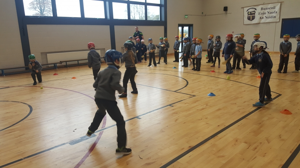 Hurling David O Dea 2nd Class 2016 (4)-min