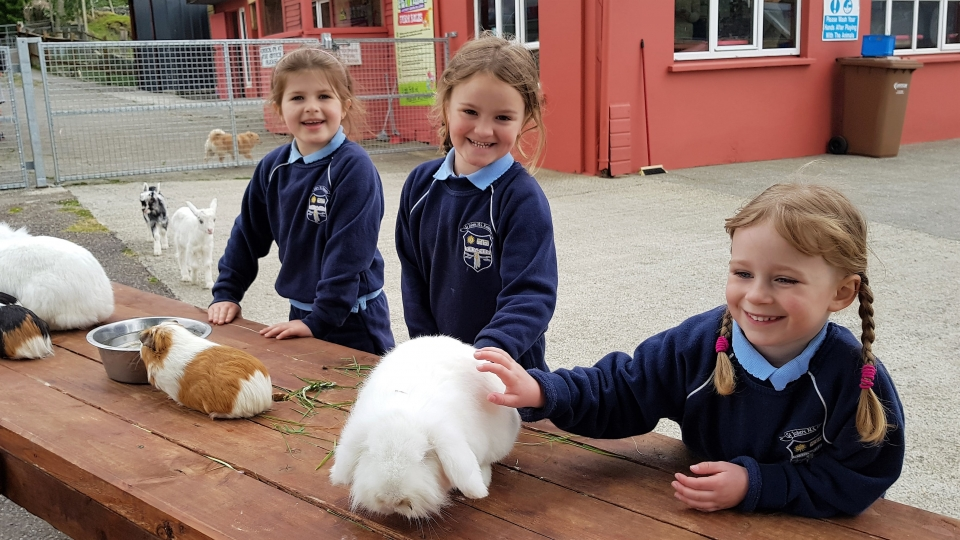 Junior Infants School Tour May 2017 Kennedys (4)-min