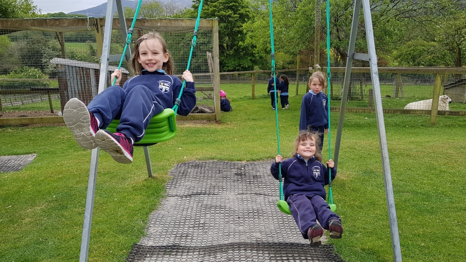 Junior Infants School Tour May 2017 Kennedys (40)-min