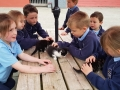 Junior Infants School Tour May 2017 Kennedys (27)-min