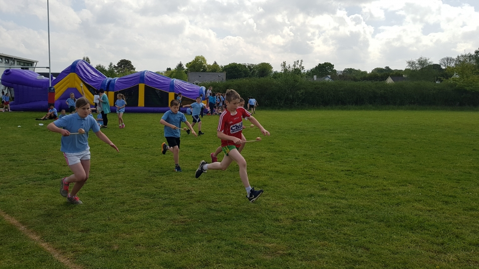 Sports Day May 2017 (79)